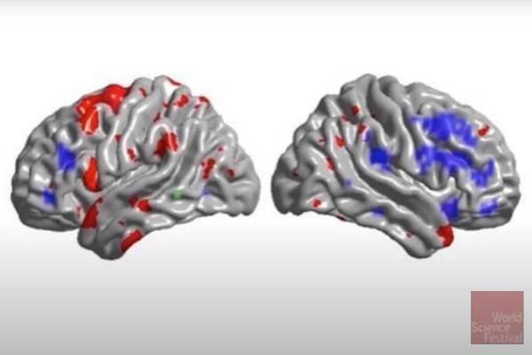 Spark of Genius? Awakening a Better Brain